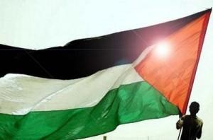 42049201211191325bandera palestina